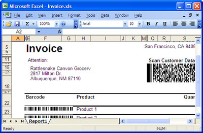 How to use Barcode Professional in Visual Studio Local Report ...