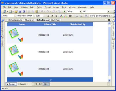 ImageDrawGridViewDataBinding - Micrisoft Visual Studio