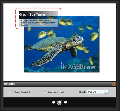 Photo Metadata spots
