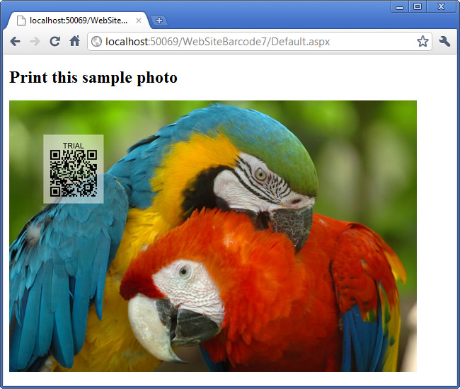 The high quality photo with a dynamically generated QR Code from ASP.NET